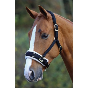 Fleece Lined Lunge Cavesson