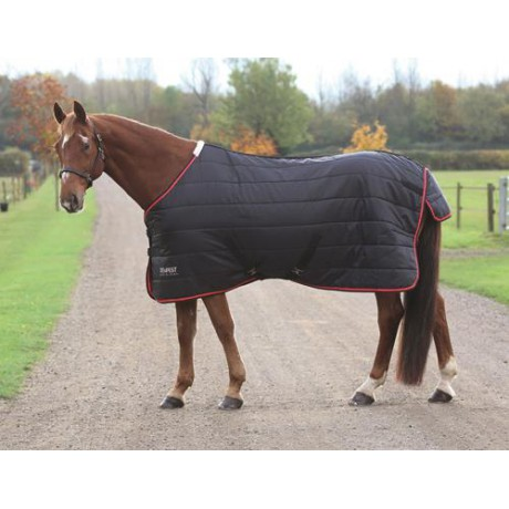 Tempest 100 Stable Rug