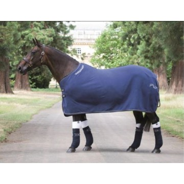 Tempest Original Fleece Show Rug